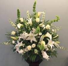 Elegant White Tribute