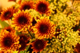 Designer\'s Choice * Fall Flowers
